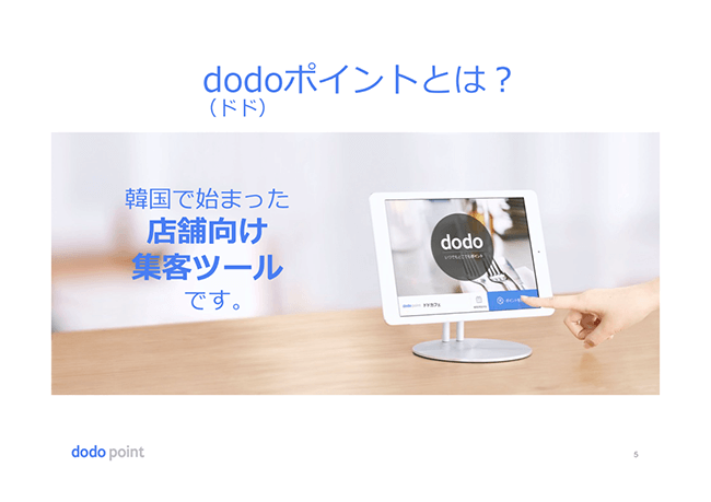 dodo-point (1).png