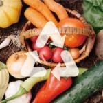 食品廃棄物の転売防止へガイドライン