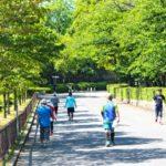 高齢者と有酸素運動の意外な関係