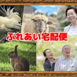 和歌山県白浜町の地元老人福祉施設へ動物たちとSmileを届けます。今年で20年目「ふれあい宅配便」を実施します。9月20日(木)21日(金)